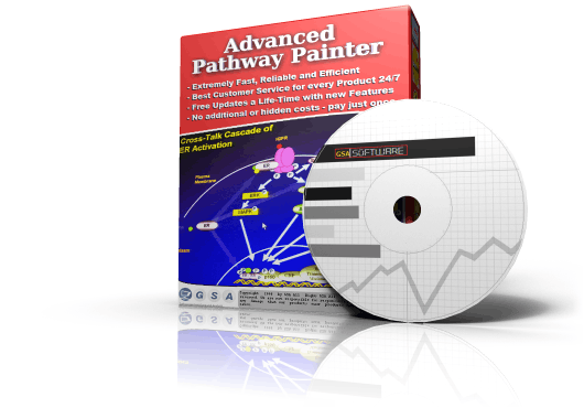 Advanced Pathway Painter box
